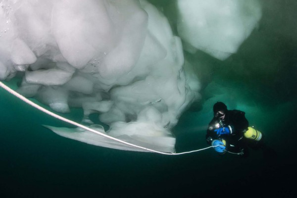 foto-taucher-unterwasserfotografie-baikalsee-eistauchen-blockeis-februar737645F2-D3AC-A8E3-7D1F-AE26B18EDE03.jpg
