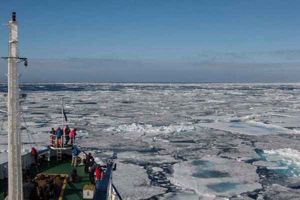 09-foto-taucher-fotografie-arktis-svalbard-packeis20F71012-B5DA-595A-E9AD-4D15B8174B58.jpg