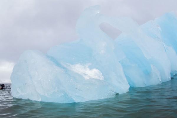 09-foto-taucher-unterwasserfotografie-arktis-svalbard-eisberg-taucherA3450845-A7C0-6B4F-C64C-B16E3F7E22BB.jpg