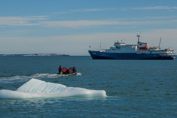 17-foto-taucher-fotografie-arktis-svalbard48272950-0A5D-50A3-2692-ABEEEAD0C296.jpg