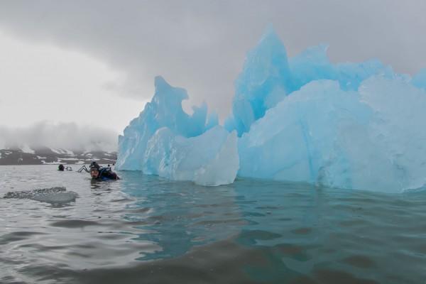 22-foto-taucher-unterwasserfotografie-arktis-svalbard-eisberg-taucher4CD835DC-423A-FBB3-B05A-58DDD2709B60.jpg
