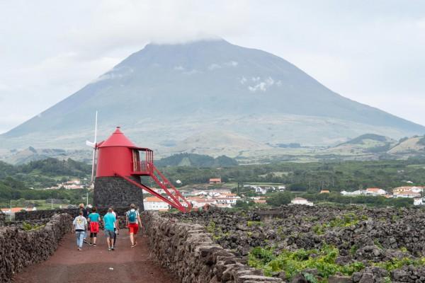foto-taucher-fotografie-azoren-pico-vulkan-windmuehleE597D26B-27CB-769D-84E7-8B047DDDD147.jpg