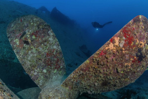 foto-taucher-unterwasserfotografie-aegypten-thistlegorm794CBA81-E000-5527-9B8A-BF88081FAC98.jpg